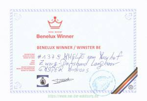 BeNeLux Winner BE 2015 Amelie_Page_1