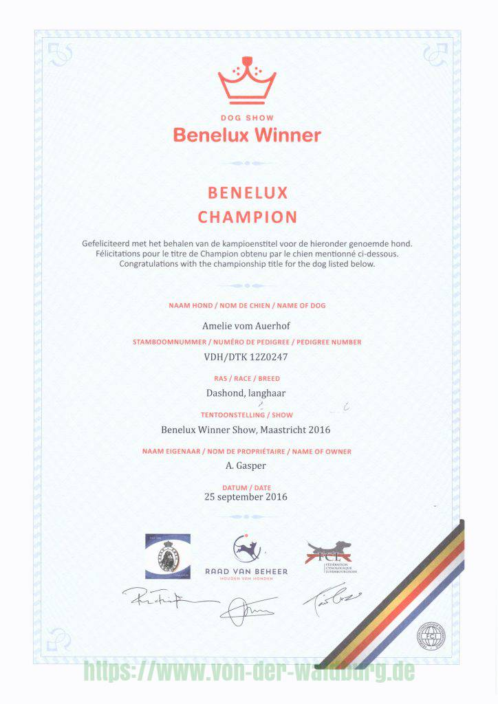 BeNeLux Champion 2016 Amelie vom Auerhof